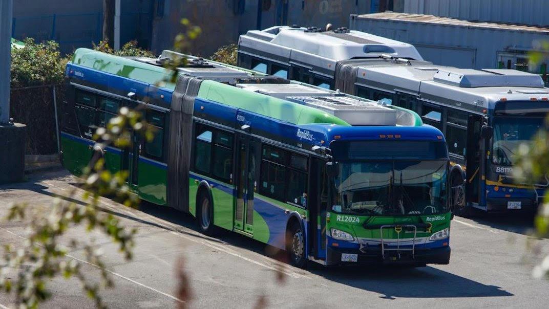 트랜스링크 B-Line 버스 새 디자인 공개