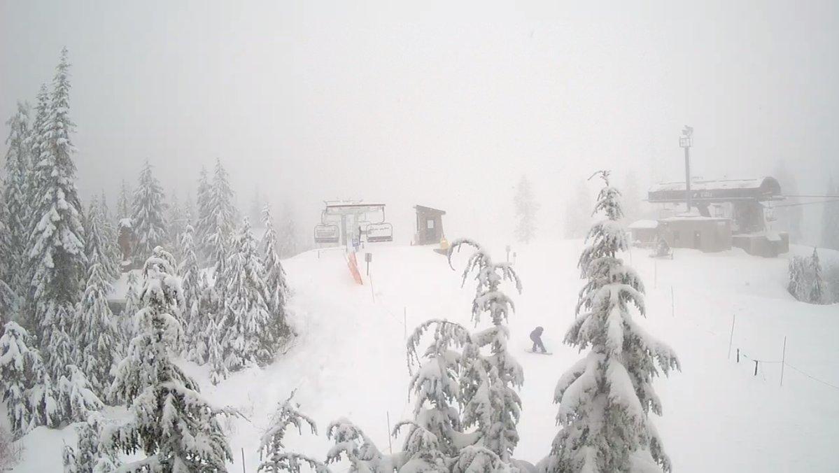 간밤의 눈꽃 만발... 스키장 자연설 만끽